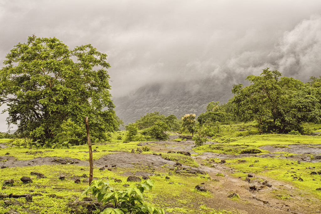 Rocky plateau en route to Bhimashankar